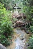 Schronienie w dżungli Fotografia Stock