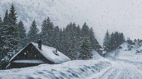 Schronisko Morskie Oko, Tatras alto, Polônia Fotografia de Stock Royalty Free