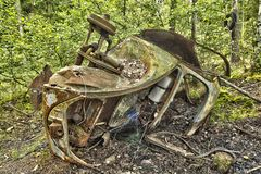 Schrootauto in het hout Stock Foto
