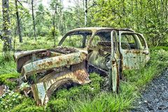 Schrootauto in het hout Stock Afbeeldingen