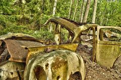 Schrootauto in het hout Stock Fotografie