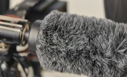 Schrotflinte-Mikrofon und Wind-Schutz Stockfotografie