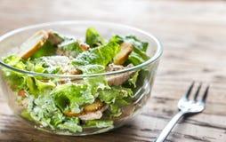 Schüssel Hühner-Caesar-Salat Lizenzfreies Stockfoto