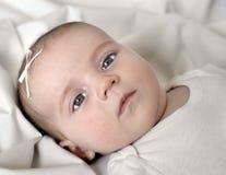 Schätzchen auf weißer Decke Lizenzfreie Stockfotografie