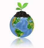Schützen Sie die Umgebung mit einem Baum getrennten ove Stockfotos