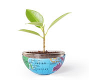 Schützen Sie die Umweltkonzepterde mit Baum Lizenzfreies Stockbild