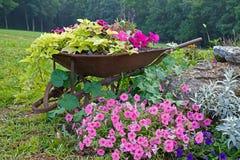 Schubkarre mit Blumen Stockbild