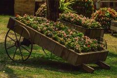 Schubkarre mit Blumen Stockbilder