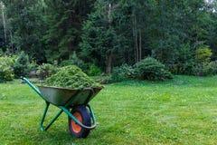 Schubkarre mit geschnittenem Gras im Garten E Gartenwarenkorb mit einem Rad Stockfotografie