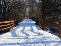 Schug slinga i vinter i Tompkins County NYS royaltyfri foto