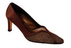 Schuh der Entwerferfrau Lizenzfreies Stockbild