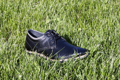 Schuh im Gras Stockfotografie