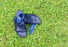 Schuhe auf Gras Stockfotografie