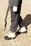 Schuhe der königlichen Abdeckung, Stockholm stockfotografie