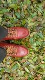 Schuhe für Mann Stockfotografie