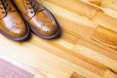 Schuhe-Ideen und Konzepte Nahaufnahme von Tipps männlichen ` s Brooges lizenzfreie stockfotografie