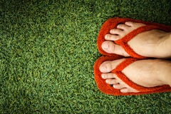 Schuhe im Gras Stockfotos