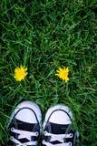 Schuhe und Blume Lizenzfreie Stockbilder