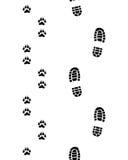 Schuhe und Tatzen Lizenzfreies Stockfoto