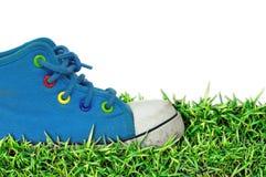 Schuhgras des Kindes, weißer Hintergrund Stockfoto