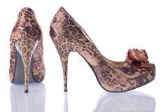 Schuhleopard der Frauen Stockfoto