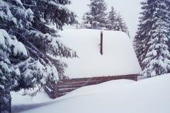 Schuilplaats, blokhuis dat met sneeuw, onder het pijnboombos wordt behandeld Stock Afbeelding