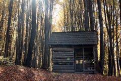 Schuilplaats in hout stock fotografie