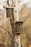 Schuilplaats voor vogels in het vogelhuis die op een boom in de herfstpark hangen Royalty-vrije Stock Foto's