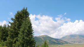 Schuine standmening van blauwe hemel aan lege rustige vallei met sparren en bergen stock video