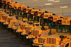 Schulbus-Lot Stockfoto