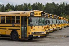 Schulbusse in der Reihe lizenzfreie stockfotografie