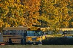 Schulbusse am Ende des Tages Stockbilder