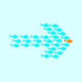 Schule der Fischschwimmens in der Form des Pfeiles Lizenzfreies Stockfoto
