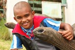 Schulejunge besucht die riesigen Schildkröten auf St. Helena Stockfoto
