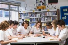 Schulkinder, die in der Schulebibliothek studieren Lizenzfreie Stockfotografie