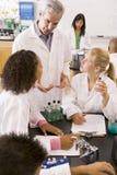 Schulkinder und ihr Lehrer in der Wissenschaft klassifizieren Stockfoto