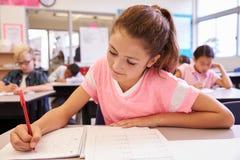 Schulmädchenschreiben an ihrem Schreibtisch in einer grundlegenden Schulklasse stockbild