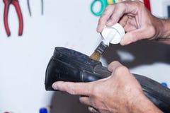 Schuster repariert einen Schuh Lizenzfreies Stockbild