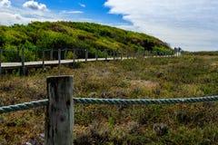 Schutz der Dünenschnur von Lizenzfreie Stockbilder