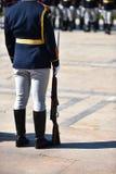 Schutz der Ehre während einer Militärzeremonie lizenzfreie stockfotos