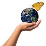 Schutz der Erde mit Handreichungskonzept Stockfotografie