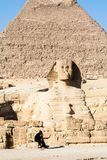 Schutz an der Sphinxe in Giseh Stockfotografie