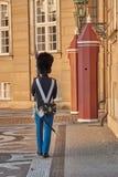 Schutz, der vor Schloss amalienborg marschiert lizenzfreies stockfoto