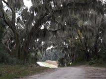Schutzgebiet in Savannah Georgia stockfotografie