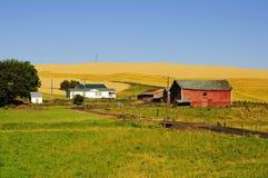 Schuur en boerderijen in Palouse Stock Fotografie