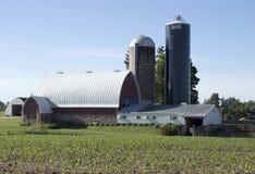 Schuur en twee silo's stock afbeeldingen