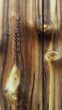 schuur houten raad Stock Foto