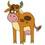 Schuwe koe Royalty-vrije Stock Afbeeldingen