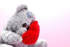 Schuwe teddy Stock Afbeelding