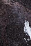 Schwärzen Sie gehämmerten Metallhintergrund, metallische Beschaffenheit der Zusammenfassung, das Blatt der Metalloberfläche gemal stockfoto